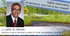 Green and Sustainable Remediation: More Than a Primer
